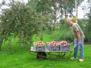 Recreatieboerderij 'aan het Voetpad' herfst1-300x225