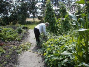 Recreatieboerderij 'aan het Voetpad' home9-300x225